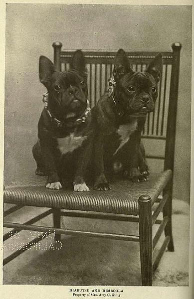 Historische Aufnahme 1905