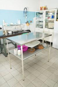 Die Französische Bulldogge beim Tierarzt einschläfern lassen