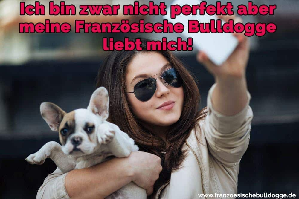 like husky guy, schwarz-weiß dating frei i'm looking