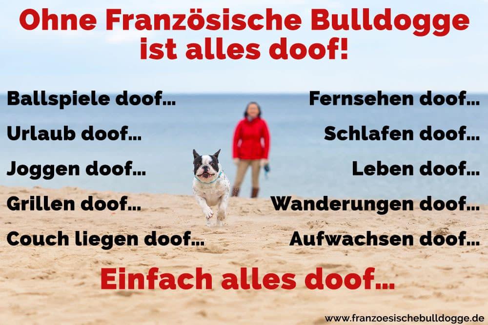 Eine Frau und ihre Französische Bulldogge am Strand