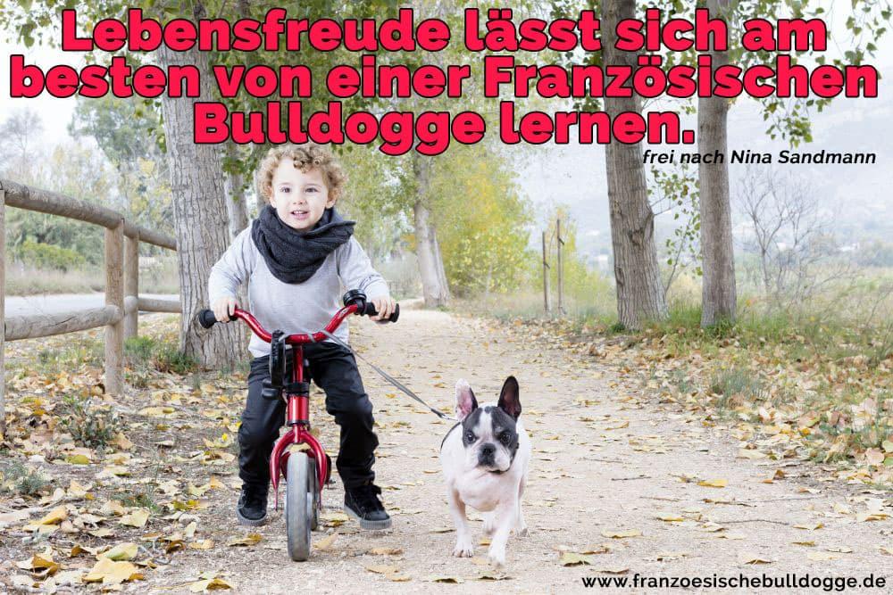 Ein Mädchen mit dem Fahrrad mit Ihrem Französisch Bulldog