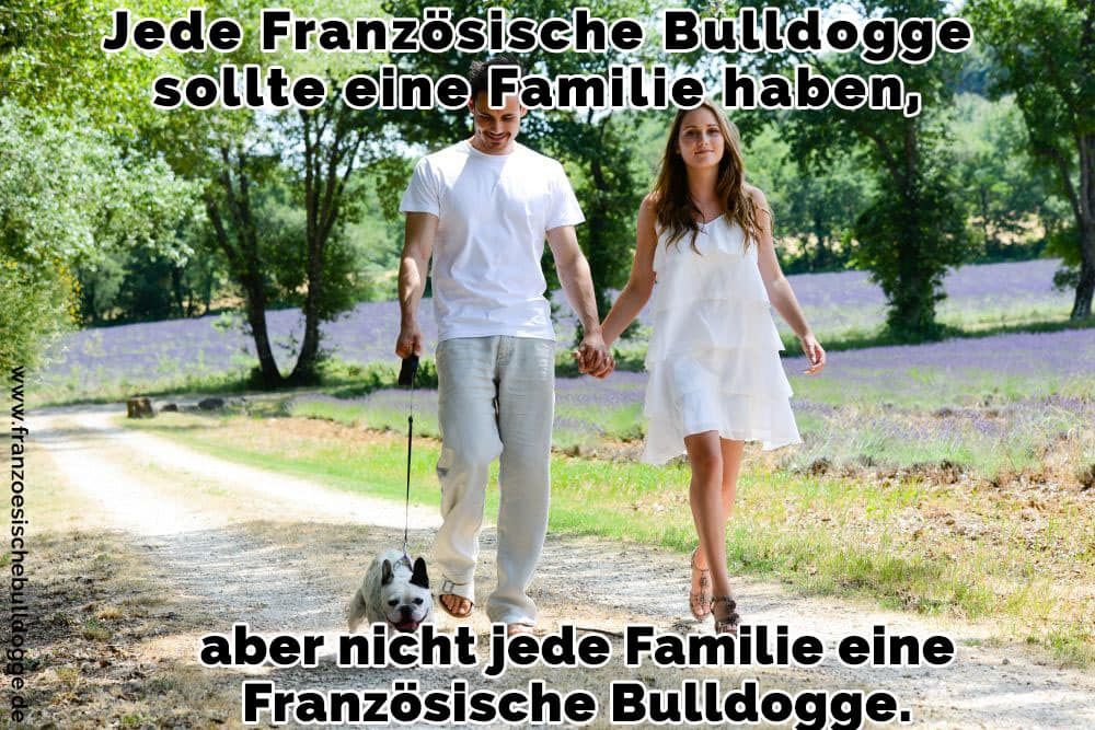Ein paar Spaziergang mit Ihrem Französisch Bulldog