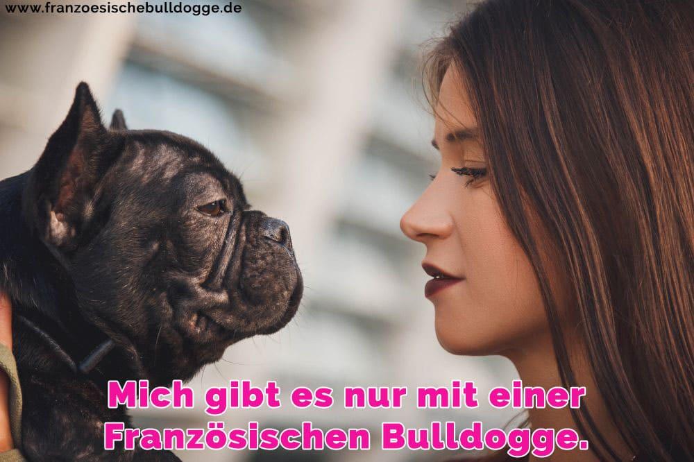 Ein Französisch Bulldog und sein Besitzer