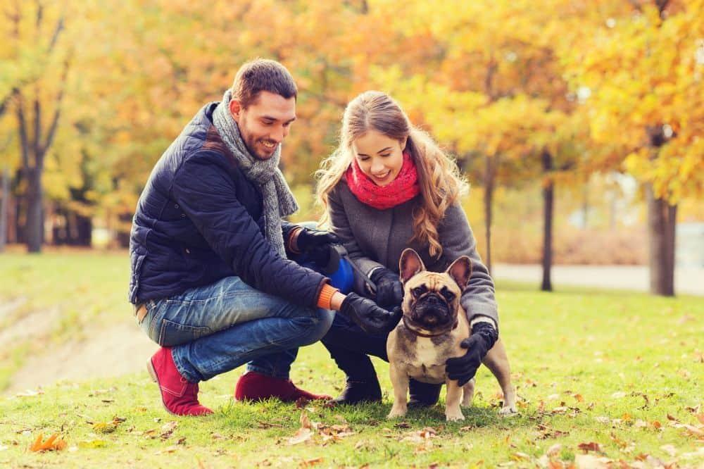 Junges Paar mit Französischer Bulldogge