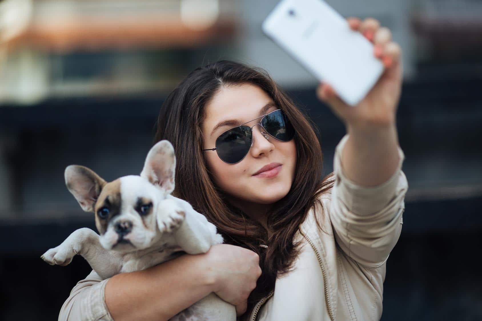 Ist die Französische Bulldogge für Anfänger geeignet?