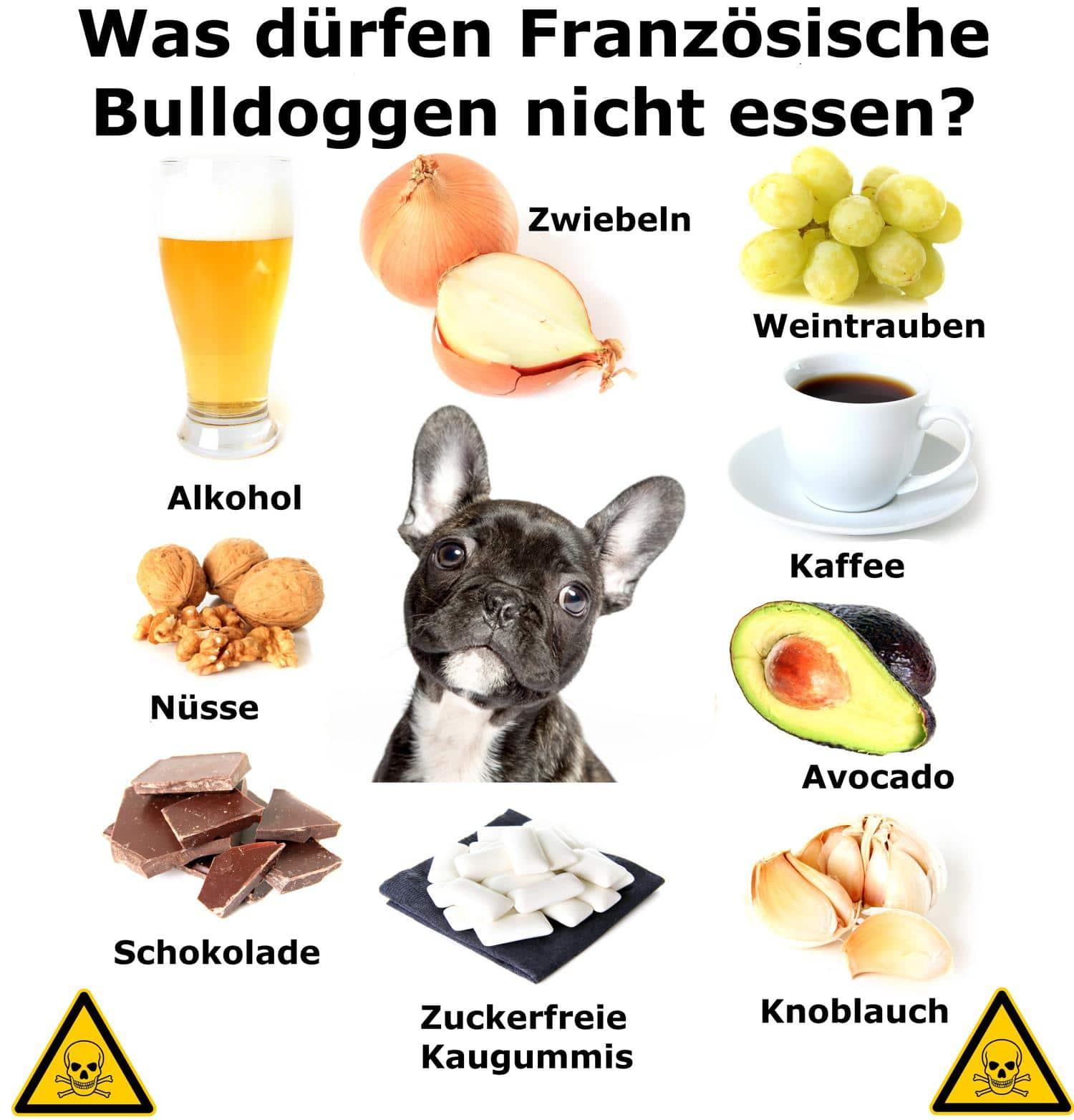 Was dürfen Französische Bulldoggen nicht essen?
