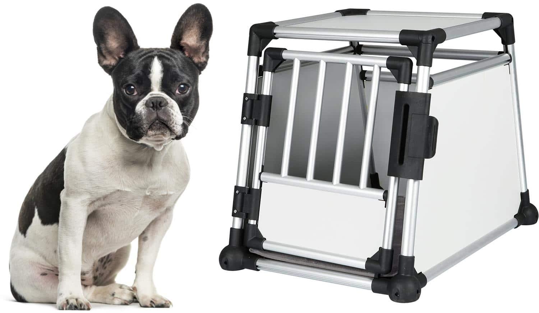Welche Transportbox für die Französische Bulldogge?