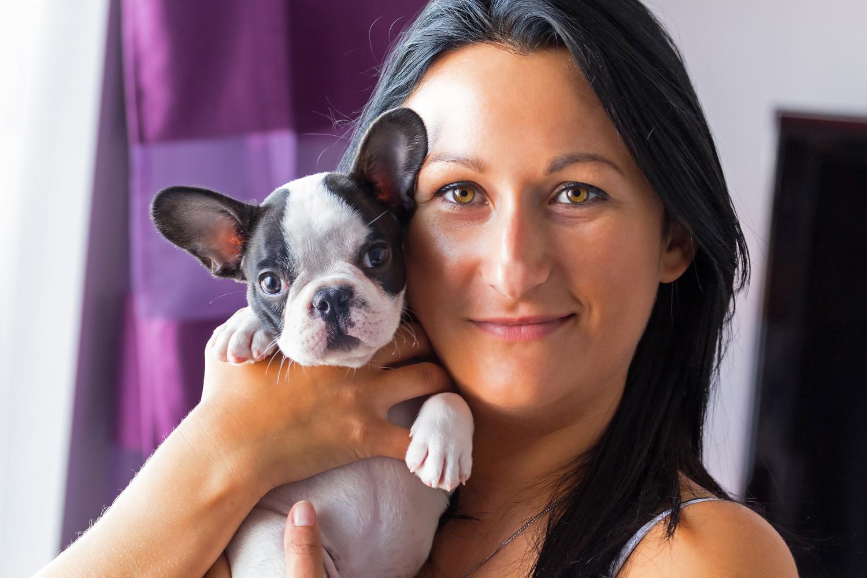 Worauf muss ich achten wenn ich eine Französische Bulldogge ohne Papiere kaufe?